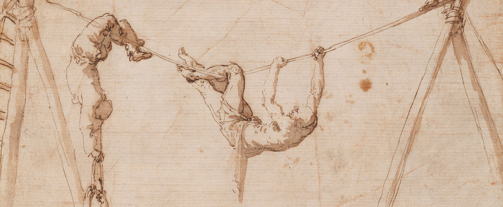 Ribera image